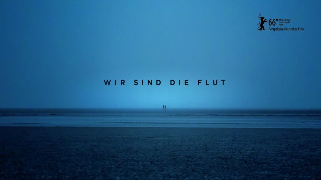 WSDF_01